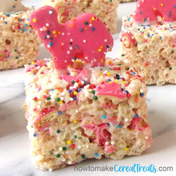 rice krispie treats filled with bits of Circus Animal Cookies and lots of rainbow nonpareil sprinkles and topped with pink or white animal -shaped cookies